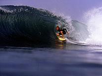 Custom surfing holidays on Fuerteventura